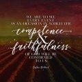 Faithfulness 2 DESKTOP