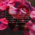 1 Corinthians 13 DESKTOP