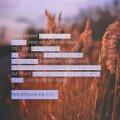 Philippians4_6-7 SOCIAL