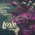 Colossians3_12-14_DESKTOP