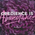 Obedience-6