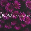Abound-in-Compassion-F