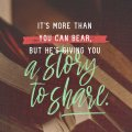 Story-SOCIAL